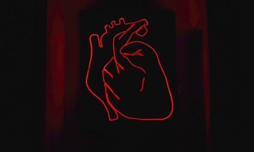 The Heart Pump