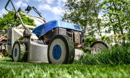 Weed Control Chemicals For Gardens