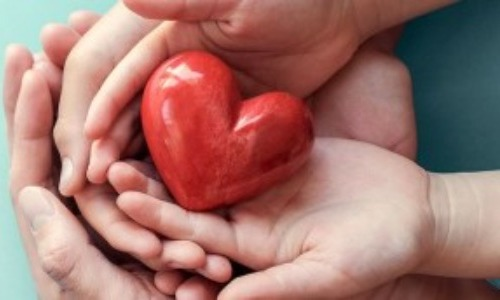 The Human Heart Beats About 100,000 Times In A Day