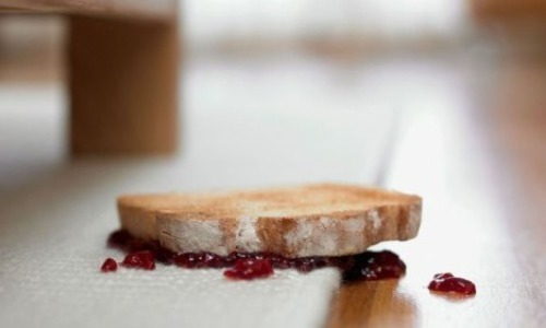 The 5-Second Rule Of Food Contamination