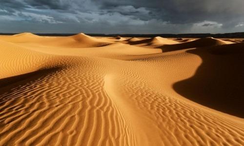 The Sahara Is The World's Largest Desert