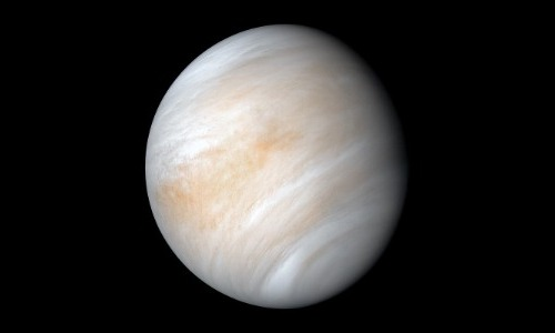 Venus Is Filled With Life