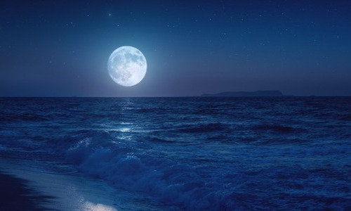 The Moon's Gravity Causes Tides